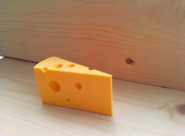 3D printed door stopper cheese